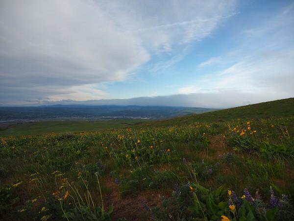 Dalles Mtn Ranch, 4-15