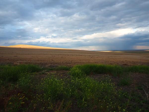 Sunset, Prosser, 5-15